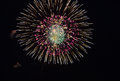 Fireworks in night sky colorful display the Stock Image