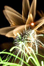 Fireworks3 Royalty Free Stock Photo