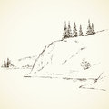 Firs on hill above river. Vector drawing
