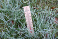 First frosts thermometer is in the green grass covered with hoarfrost and shows subzero temperature Stock Photos