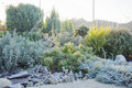 First morning frost in the garden in autumn Royalty Free Stock Photo