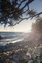 First point noosa morning view at little cove australia Stock Photos