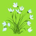 First spring flowers snowdrops beautiful vector design element Stock Photography