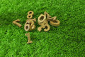 The first, Wooden numbers on green grass Royalty Free Stock Photo
