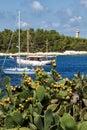 Fiscardo beach Royalty Free Stock Photo