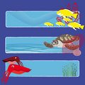 Fish banners 4 no text Royalty Free Stock Images