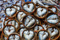 Fish in barrels for sell at market bangkok Royalty Free Stock Images