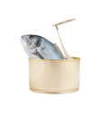 Fish can isolated Royalty Free Stock Photos