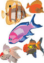 Fish collection Royalty Free Stock Images