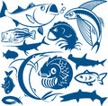 Fish collection clip art of various types of Royalty Free Stock Photos