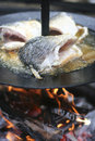 Fish cooking on open fire Royalty Free Stock Photo