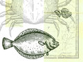 Fish; crab and sliced lemon; with a map Royalty Free Stock Images