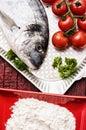 Fish delicacy foto with mediterranean dorado Royalty Free Stock Images