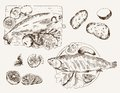 Fish dish set of vector sketches Royalty Free Stock Image