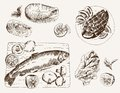 Fish dish set of vector sketches Stock Image