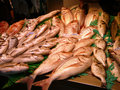 Fish display Royalty Free Stock Photo