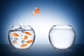 Fish escape concept bowl jump cocept Stock Image