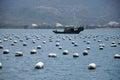 Fish farms & boat Royalty Free Stock Photo
