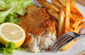 Fish, fries and salad Stock Photography