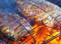 Fish on the grill. Royalty Free Stock Photo