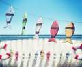Fish Hanging Peg Buoy Summer Sea Ocean Fence Concept Royalty Free Stock Photo