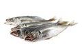Fish horse mackerel Royalty Free Stock Photo
