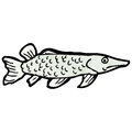 Fish illustration Stock Photography