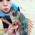 Fish kiss freshly caught snapper fishing Royalty Free Stock Photo