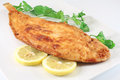 Fish lemon sole dish with fried Royalty Free Stock Photography