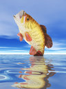 Fish on Lure Stock Image