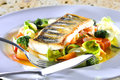 Fish meal vegetable garnish Royalty Free Stock Photography