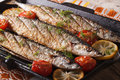 Fish menu: grilled saury with vegetables on the grill pan Royalty Free Stock Photo
