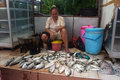 Fish merchants selling in the market the karimun island central java indonesia Stock Photography