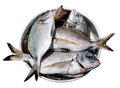 Fish in metal plate Royalty Free Stock Photo