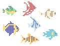 Fish with mosaic elements Stock Image