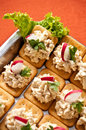 Fish pate crackers with and radish Royalty Free Stock Photos