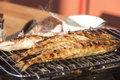 Fish perch baked at home on the grill Royalty Free Stock Photo
