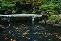 Fish Pond at Japanese Garden Royalty Free Stock Photo