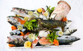Fish and seafood Royalty Free Stock Photo