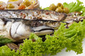 A fish set with vegetables Royalty Free Stock Photography