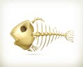 Fish skeleton illustration on white background Stock Images