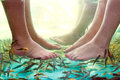 Fish spa pedicure Royalty Free Stock Photography