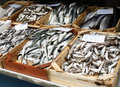 Fish stall Stock Photography
