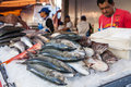 Fish stall sao paulo brazil august in a street market Royalty Free Stock Photos