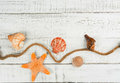 Fish star and sea shells on the wooden background Royalty Free Stock Photo