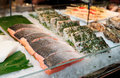 Fish steaks on market display cooled Royalty Free Stock Photo