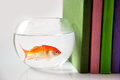 Fish tank and books Stock Photo