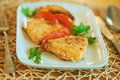 Fish and tomatoes in plate Stock Image