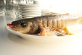 Fish whole prepared on plate close up shot Royalty Free Stock Images