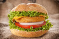 Fishburger time fresh with tomato and onion Stock Images